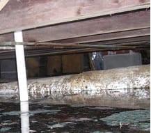 Vochtige kruipruimtes zorgen voor vochtige en koude vloer